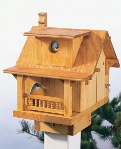 Wren birdhouse plans free woodworktips for Song bird house plans