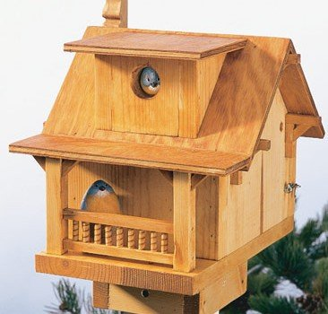 Free Birdhouse Plans Woodwork City Free Woodworking Plans