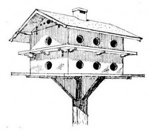 Purple Martin Bird House Plans Woodworker Magazine