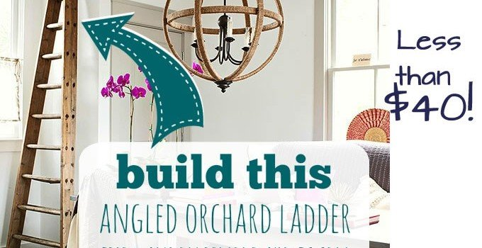 Orchard Ladder Building Plans