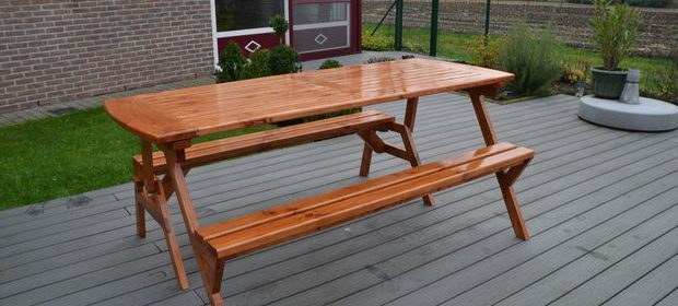 Convertible Bench/table