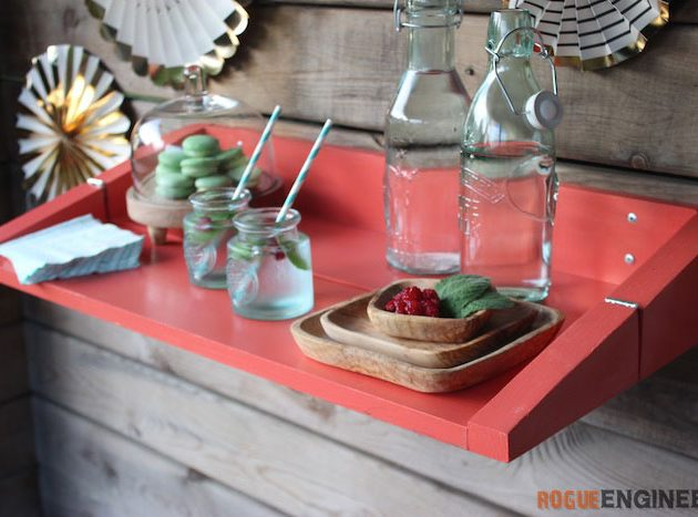 Entertaining Shelf » Rogue Engineer